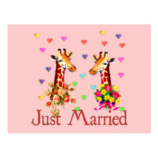 Jirafas del boda tarjetas postales