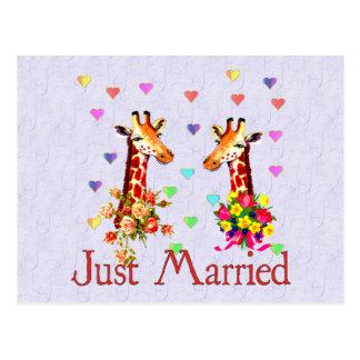 Jirafas del boda postal
