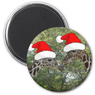Jirafas del navidad imán redondo 5 cm
