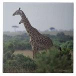 Jirafas en África Tejas Cerámicas