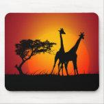 Jirafas en el mousepad de África Alfombrilla De Ratones