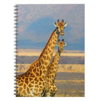 Jirafas en paisaje hermoso de la naturaleza de cuaderno