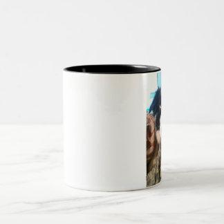 JJ~The Border Collie~Coffee Mug
