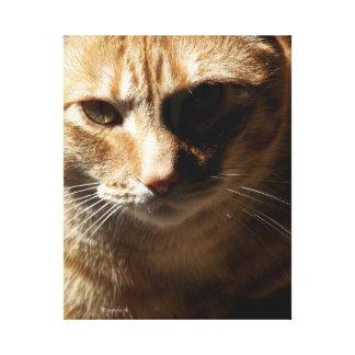 jjhelene Modi Bear, Bengal Cat, Canvas Wrap
