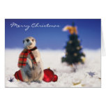 Jo Jo hola le desea Felices Navidad Felicitacion