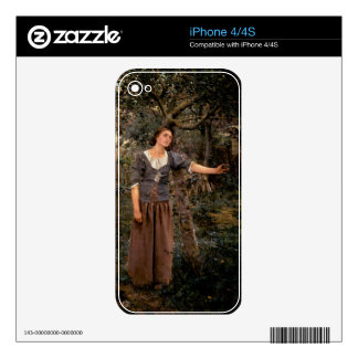 joan of arc skin for the iPhone 4S