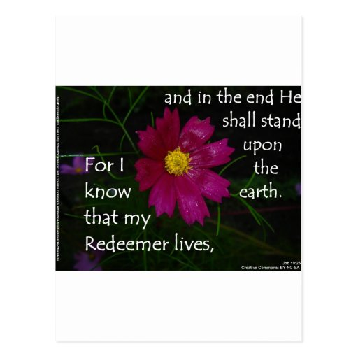 Job 19:25 I know that my Redeemer Lives! Postcard