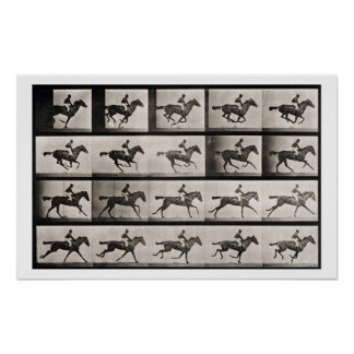 Jockey on a galloping horse plate 627 from Anima Poster