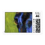 Joe's eye # 2 stamps