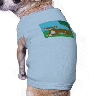 Joey Pet Clothing