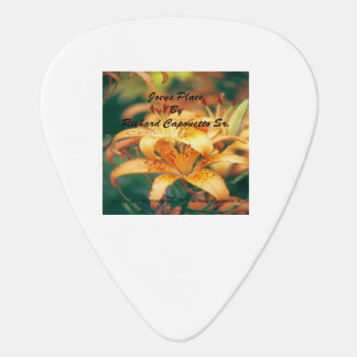 Joeys Place Guitar Picks