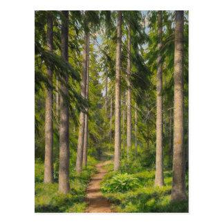 Johan Krouthén Solbelyst skogsstig CC0461 Postcard
