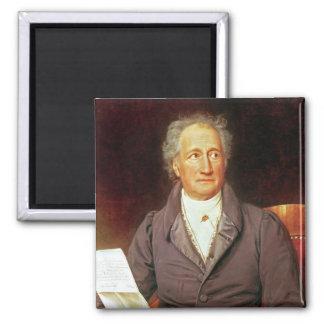 Johann Wolfgang von Goethe  1828 Magnet