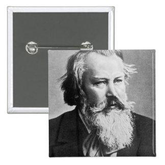Johannes Brahms, 1879 Pins