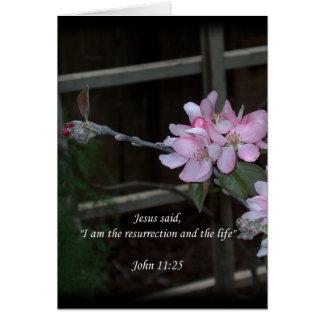 John 11:25 ~ Resurrection and the Life Card