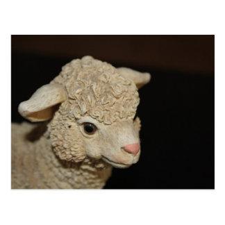 John 15:12-14 Lamb Postcard