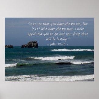 John 15:16 Poster print