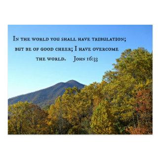 John 16:33 In the world ye shall have tribulation. Postcard
