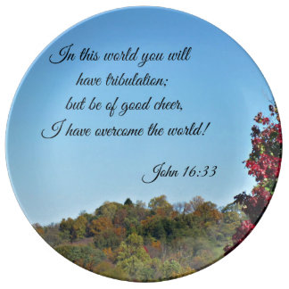 John 16:33 In the world you will have... Dinner Plate