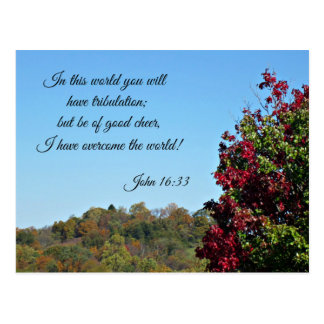 John 16:33 In the world you will have... Postcard