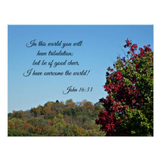 John 16:33 In the world you will have... Poster