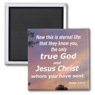 John 17:3 magnet
