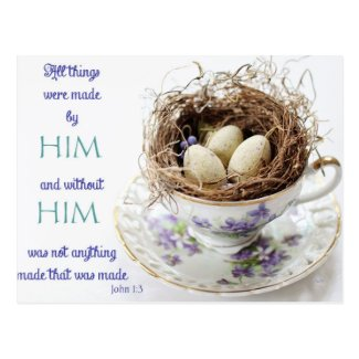 John 1:3 Scripture Bird Nest Postcard