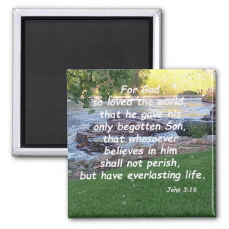 John 3:16  (2) magnet