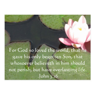 John 3:16 Christian Inspirational Quote Postcard