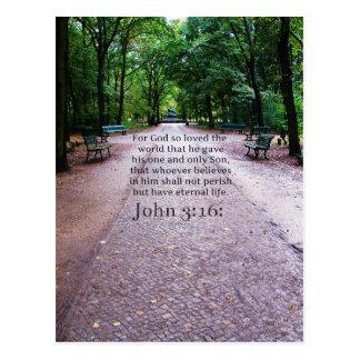 John 3:16: Inspirational Biblical quote NATURE Postcard