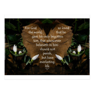 john 3:16 king james on heart leaf postcard
