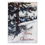 John 3:16 KJV Christmas Card