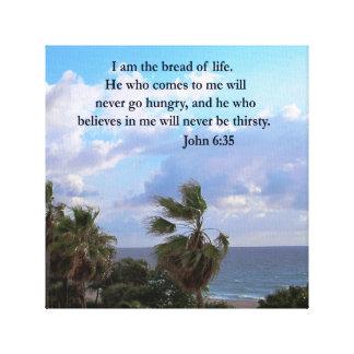 JOHN 6:25 OCEAN AND PALM TREE PHOTO CANVAS PRINT
