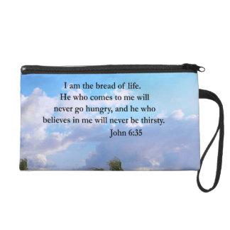 JOHN 6:25 OCEAN AND PALM TREE PHOTO WRISTLET PURSE