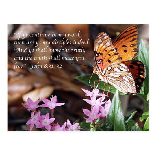 John 8 Gulf Fritillary Butterfly Postcard