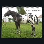 "JOHN AND MARIE CRAIG&#39;S FAMILY APPALOOSAS CALENDAR<br><div class=""desc"">A calendar of the beautiful Appaloosas owned by John and Marie Craig&#39;s &quot;Family Appaloosas&quot;.</div>"