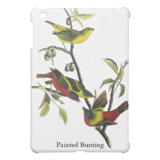 John Audubon Painted Bunting iPad Mini Covers