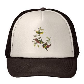 John Audubon Painted Bunting Print Trucker Hat