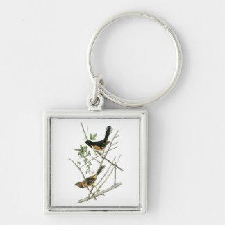 John Audubon Rufous-sided Towhee Keychain