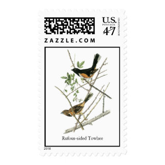John Audubon Rufous-sided Towhee Postage