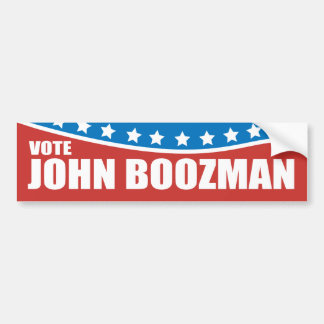John Boozman 2010 Car Bumper Sticker