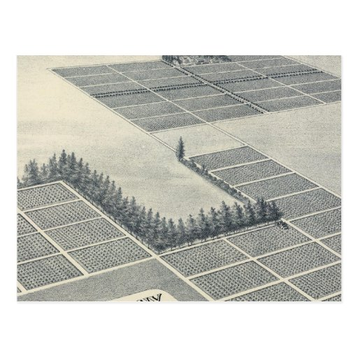John Brown Colony, Madera, California Postcard