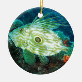 John Dory Ceramic Ornament