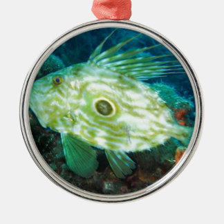 John Dory Metal Ornament