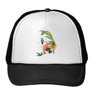 John Gould's Hummingbirds with  Pink Orchids Trucker Hat