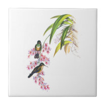 John Gould's Pink Orchids and Hummingbirds Tile
