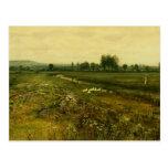 John Grimshaw- An Extensive Meadow Landscape Postcard