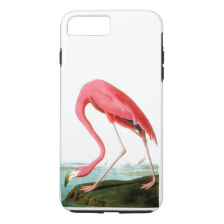 John James Audubon American Flamingo Vintage iPhone 8 Plus/7 Plus Case