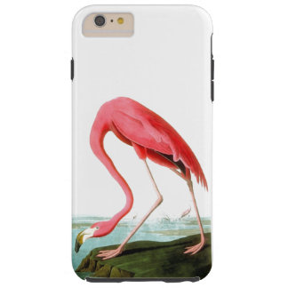 John James Audubon American Flamingo Vintage Tough iPhone 6 Plus Case