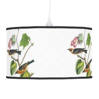 John James Audubon Warbler Pendant Lamp